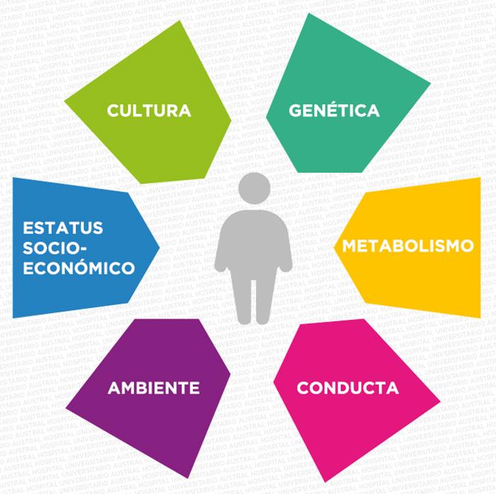 Causas de la obesidad | Hospital Austral | Cirugía Bariátrica y Metabólica | Austral Bariátrica